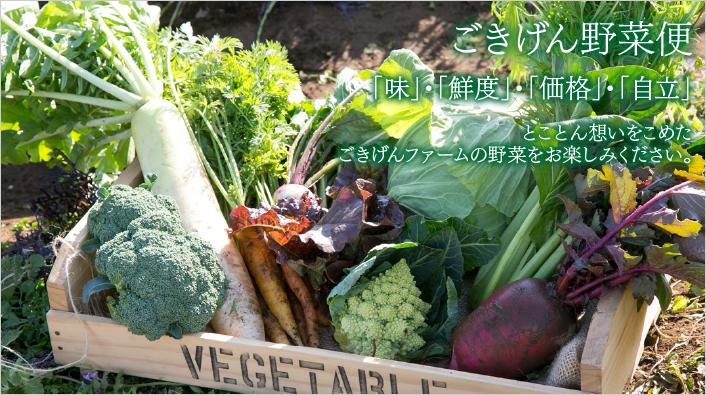 ごきげんファーム|旬の野菜